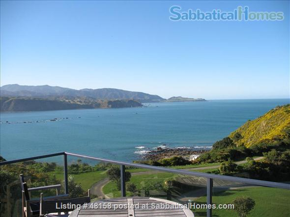 Wellington new zealand for House sitter wellington