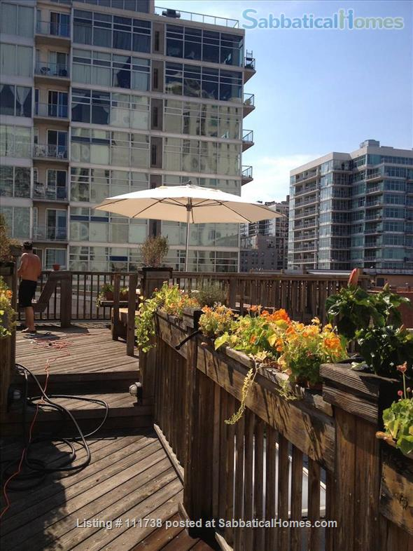 Sabbaticalhomes Home For Rent Chicago Illinois 60616 United States Of America Massive Loft