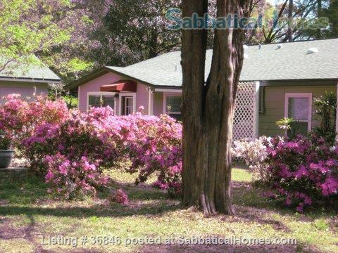 SabbaticalHomes Home for Rent Gainesville Florida 32605 United