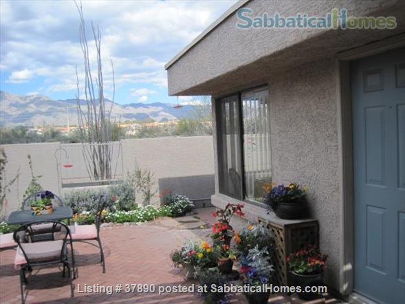 Sabbaticalhomes Com Tucson Arizona United States Of America