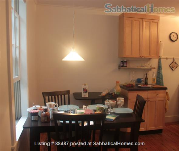 Central Kitchen Cambridge Ma: Home For Rent Cambridge Massachusetts